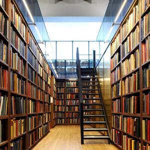 Библиотеки Электрогорска