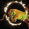 Цирки в Электрогорске