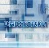 Выставки в Электрогорске