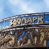 Зоопарки в Электрогорске