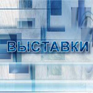Выставки Электрогорска