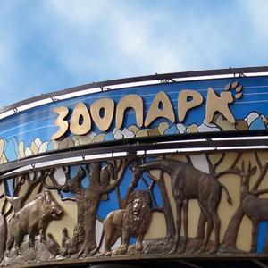 Зоопарки Электрогорска